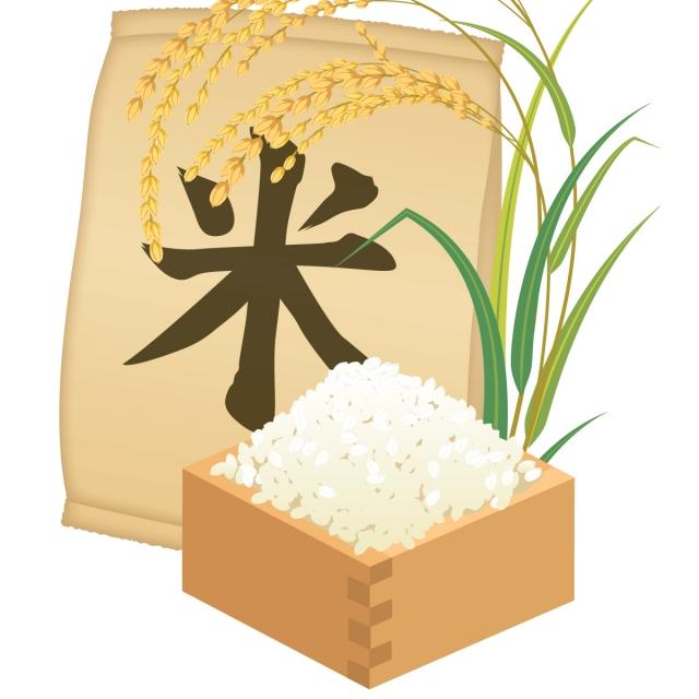 お米の選び方で胃への負担を減らす方法【米の消化について】
