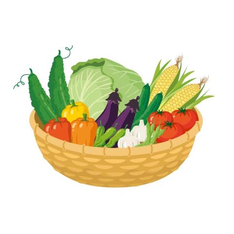 【季節の変わり目食事術】夏の不調を緩和する食材の選び方と簡単レシピ